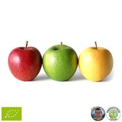 Pommes diverses locales (le...